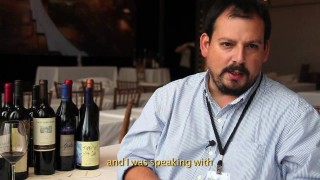 "Wines of Chile ""Vinos de Terroir"" Tasting – Part 3"